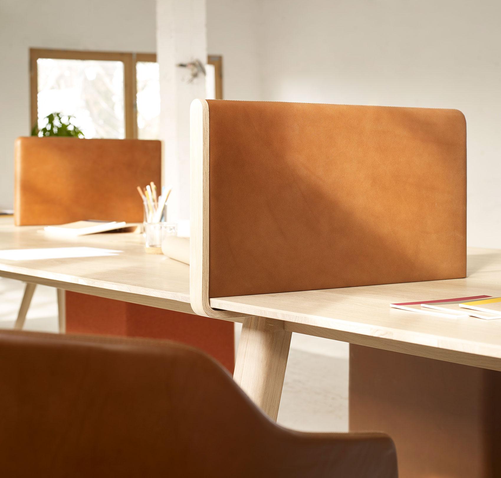 Leather-Desk-Partitions-Design-Iratzoki-Lizaso